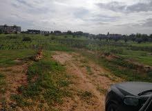 قطعة أرض للبيع مساحتها 8000م