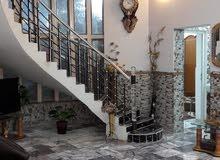بيت  للإيج   طابقين  بناء حديث الطابق    الأول استقبال كبير  وصاله واسعه وغرفتين