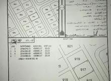 ارض سكنية بمساحة 600 متر في ولاية شناص