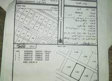 للبيع ارض سكنية جديدة