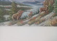 لوحة فنية زيت اصلية 80×50