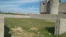 خلف جامعة طرابلس قاطع ب