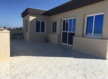apartment for rent in Tripoli city Ain Zara