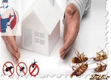 مطلوب وكيل شركة مكافحة حشرات