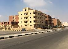 القاهرة (مدينة بدر)