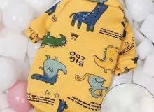 ملابس للقطط