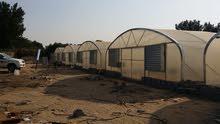 مصنع بيوت محمية محتاج عمال حدادين