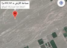 صحار العوينات مربع 29 جنبها بيوت عامره