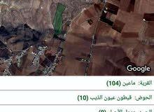للبيع أرض 96 دونم مادبا-ماعين تصلح لمشروع فلل ريفيه لمشروع طاقه شمسيه