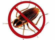 مكافحة كافه انواع الحشرات باقل الاسعار