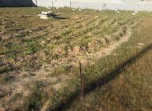 قطعة ارض للبيع بالقرب من صيدلية نهاوند طريق الساحلي