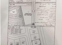 أرضين شبك سكني تجاري على طريق الهاملية - شناص ، مربع الغوابي / السعر عند الاتصال