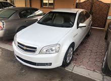 For sale 2010 White Caprice