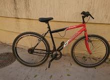 دراجة إيطالية 26 للبيع أمورها طيبة متشكي من شي انضيفة للبيع