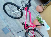 Adults girl purple pinkish 24in Mtb city bike in great condition for sale