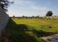 مزرعه نصف هكتار للبيع بمنطقة تاجوراء الجنين بجانب مصنع دجله للمياه وسوق السيارات