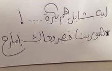 معلمه رياضيات مصرية جميع المراحل