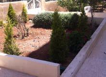 شقة أرضية مفروشة للإيجار الجبيهة دوار المنهل مع حديقة (حديقة،تراس،كراج)من المالك مباشرة