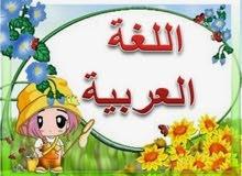 مدرس خصوصي لتعليم اللغة العربية قراءة وكتابة واملاء وخط