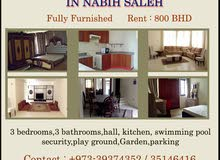 Fully furnished private villa for rent in Nabih Saleh