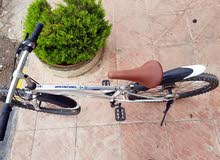 دراجه جبلي امريكي  ماركه فخمه SBED