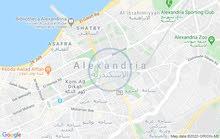 شقة للبيع بالإسكندرية