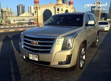 Cadillac Escalade 2016 - Used