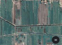 قطعة ارض قيراط ونصف للبيع بمنطقة مميزة  بالمعوضاب مركز  ادفو