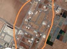 مطلوب 600في المنطقة الموضحه في الصورة في الطنيب العيادات لحد 70الف