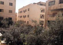 عمان -تلاع العلي الشمالي -شارع عبد الحليم عباس -تقاطع سوق السلطان