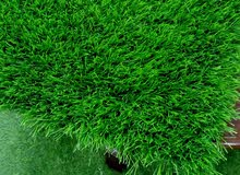 عرض خاص من شركة المها للعشب الصناعي الان سعر متر 1.900 ريال فقط