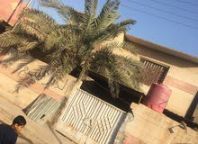 بيت 200 متر في شط العرب التنومه حي الجامعه