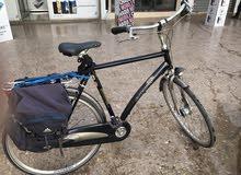 دراجة موريحة