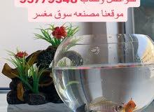 سمك زينه واكسسوراتها يتوفر توصيل