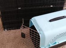 Pet cage and travel box for sale
