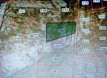 ارض للبيع  منطقة القنيطرة الحوض الاول  المساحة 9994.2متر مربع