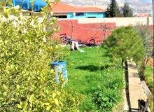 مزرعة في موبص5000م وبيت150م-شارع الاردن