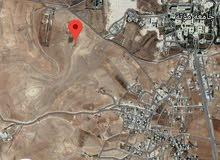 للبيع ارض بالقرب من جامعه مؤته مقابل مدرسه الجامعه