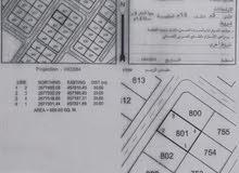 أرض سكنية للبيع وادي العراد