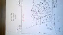 قطعة ارض للبيع في مرود - الكرك