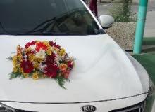 Rent a 2013 Kia Optima with best price