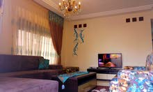Fully Furnished 2-bedroom Ground floor Private Entrance Near Cozmo