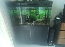 حوض سمك 1 متر كامري مع فلتر خارجي