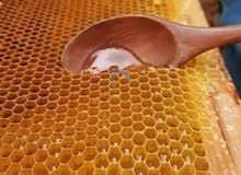 عسل نحل سيناوي خام درجة اولى