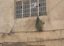 دار للبيع مدينة الصدر  قطاع 26 قرب معمل الغاز واجهة 4 ونزال 10