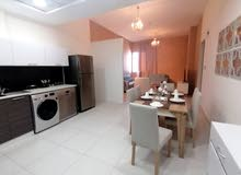 Spacious Free Hold 2 BR Unfurnished Apartment + Balcony and Facilities New Hidd For Sale