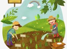 أرخص ارض زراعية بالسوق