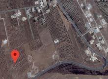 ارض للبيع كفريوبا ع طريق بيت يافا الرئيسي