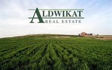 ارض للبيع في جرش قرية برما مساحة 16 دونم  مساحة البناء 120م