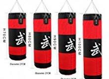 Boxing or Punching bag